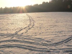 Ski(lang)lauf gut